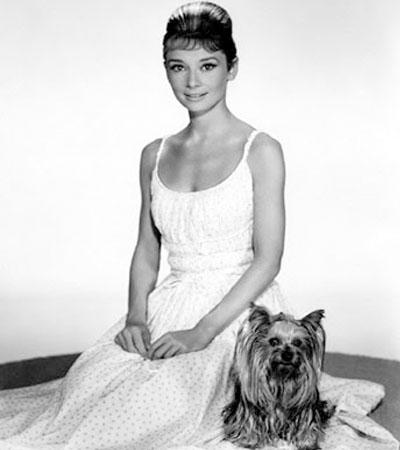 Одри Хепберн с собачкой в белом платье