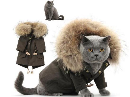 британец в меховой куртке