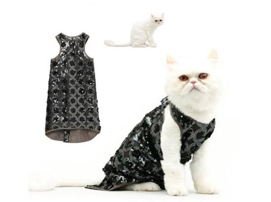 кошка в ажурном платье
